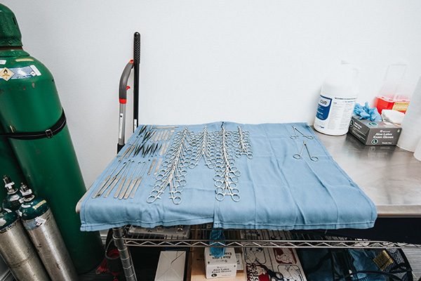 surgical instruments on a table